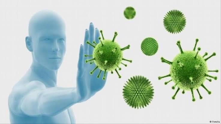 للوقاية من كورونا | أهم الأشياء التي تقوي جهاز المناعة