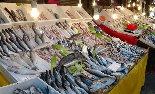 أسعار الأسماك في مرسين تنخفض بنسبة 80 في المائة